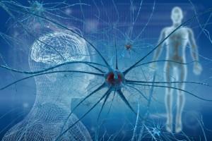 自律神経を整える